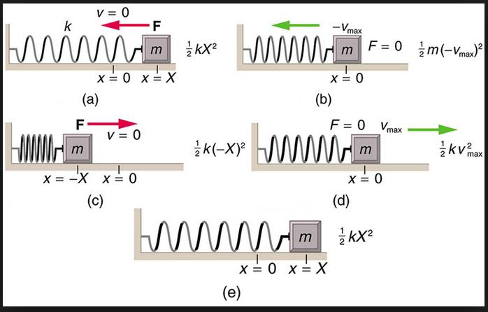 harmonic oscillator clinton