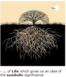 tree living